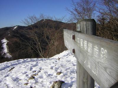 daikumo17.jpg