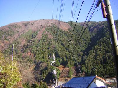daikumo6.jpg