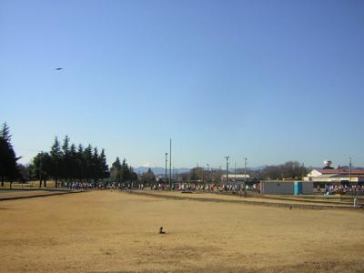 fb2010b.jpg